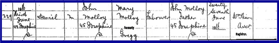 birth-my-father-daniel-molloy-birth-certificate-03061916.